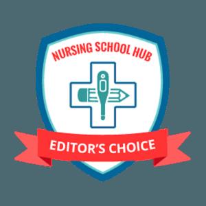online-nursing-schools