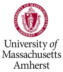 University of Massachusetts-Amherst square logo