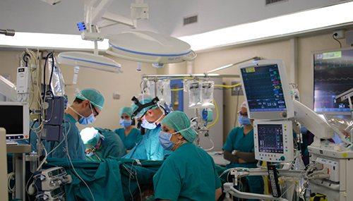 08. Cardiovascular Perfusionist