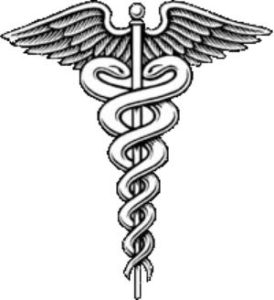 nurse seal