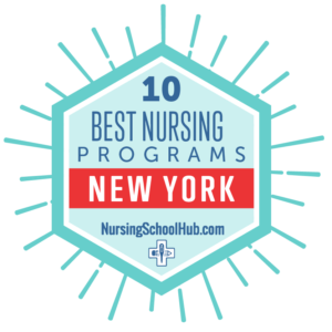 10 Best Nursing Programs In New York For 2020